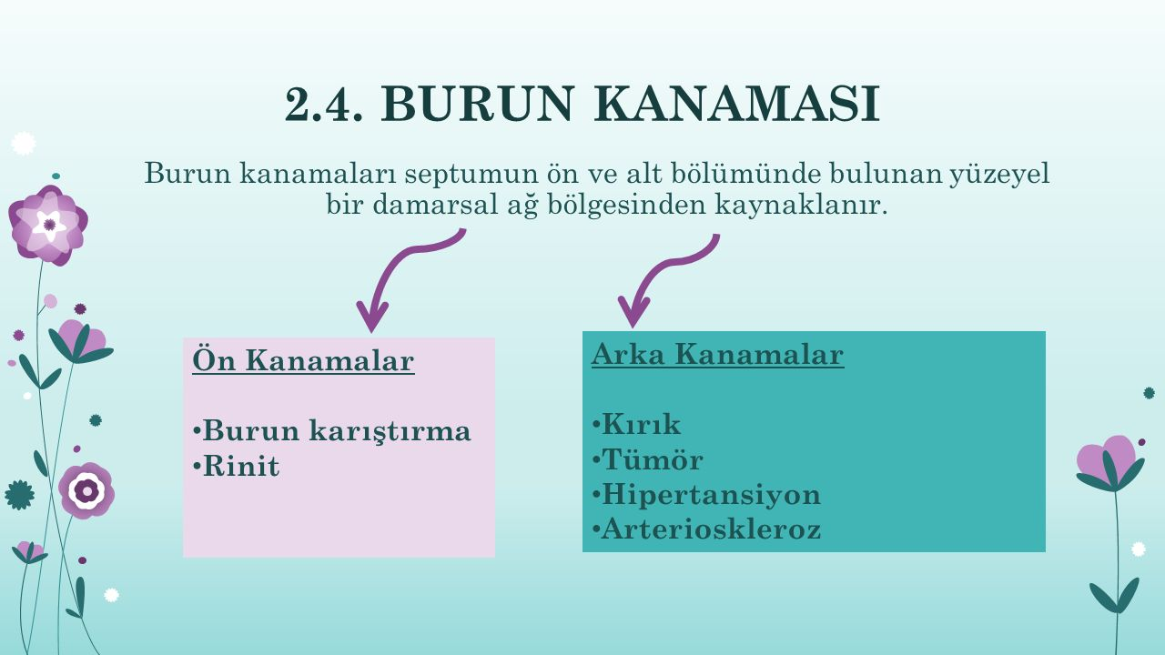 2.4. BURUN KANAMASI Burun kanamaları septumun ön ve alt bölümünde bulunan yüzeyel bir damarsal ağ bölgesinden kaynaklanır.