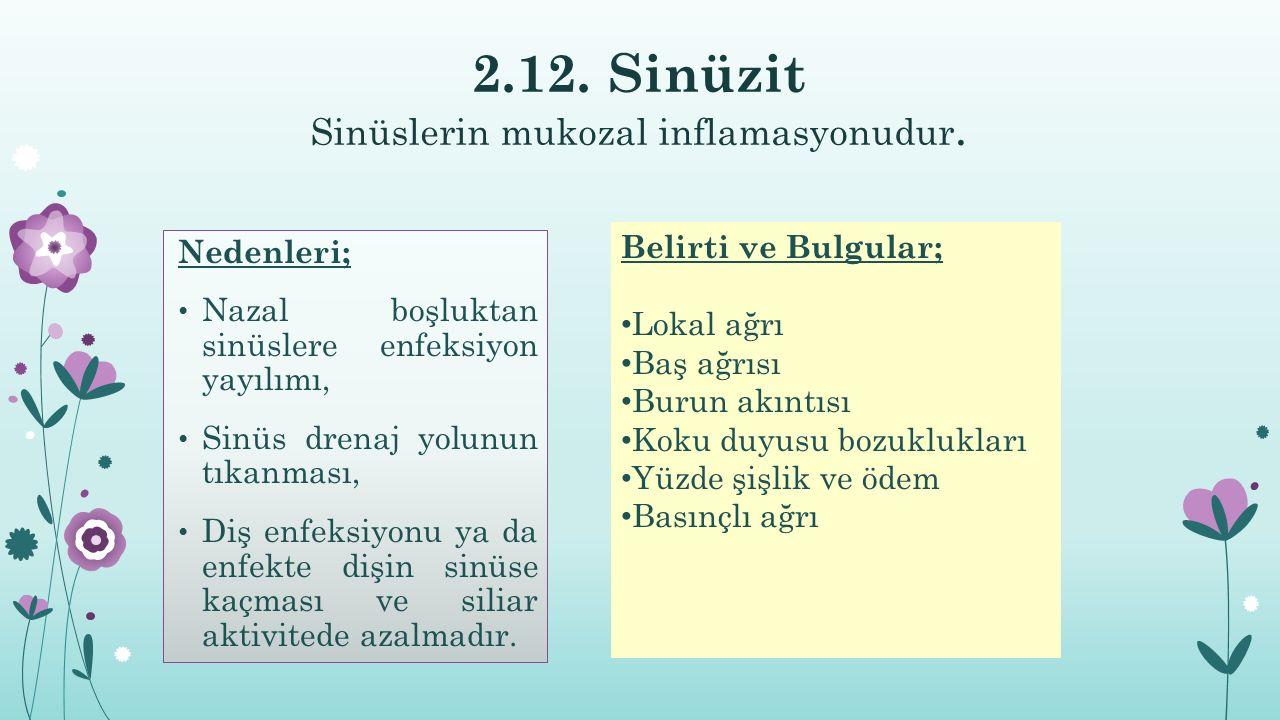 2.12. Sinüzit Sinüslerin mukozal inflamasyonudur.