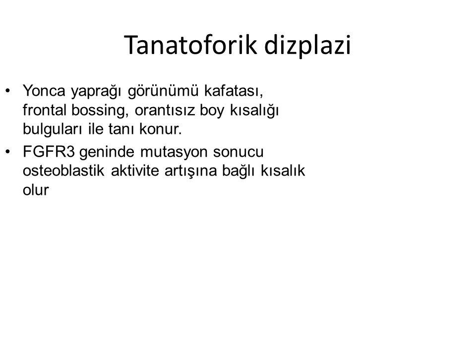 Tanatoforik dizplazi Yonca yaprağı görünümü kafatası, frontal bossing, orantısız boy kısalığı bulguları ile tanı konur.