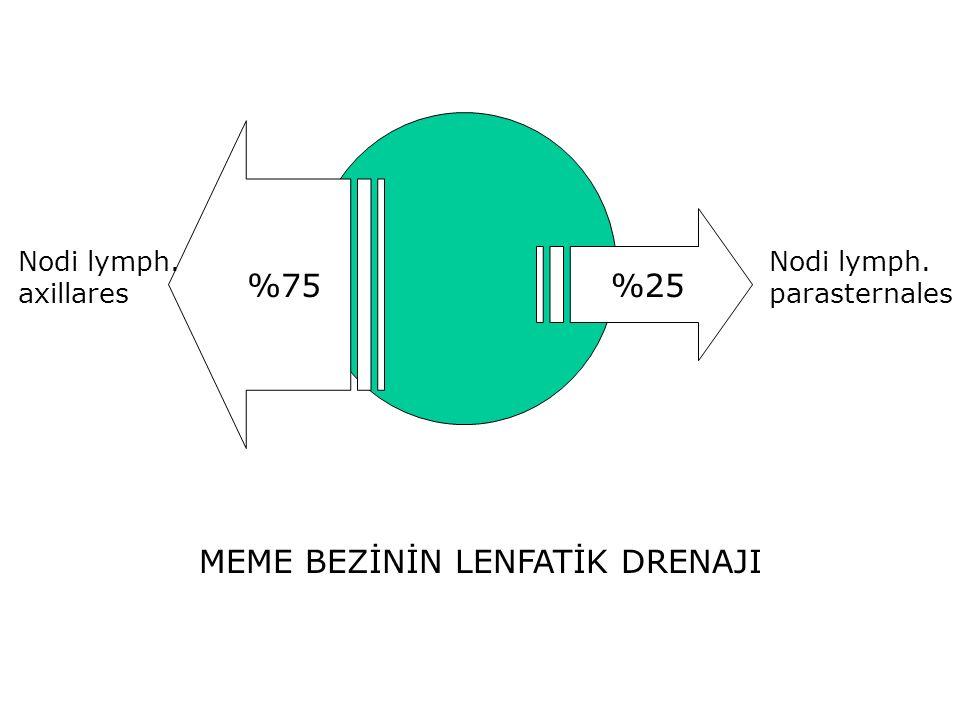 MEME BEZİNİN LENFATİK DRENAJI