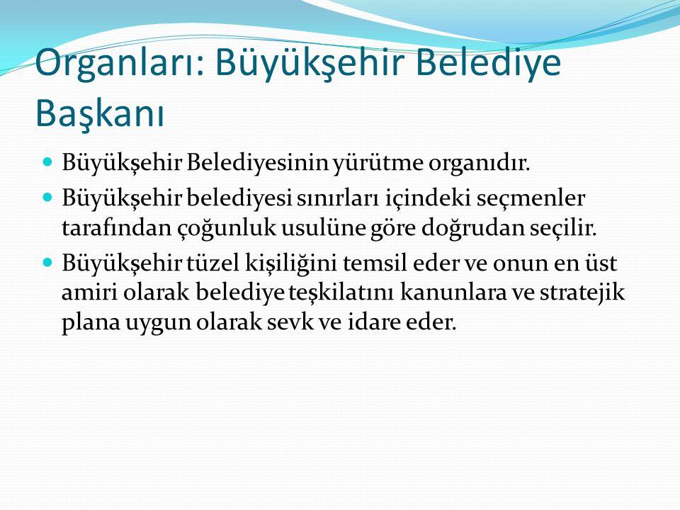 Organları: Büyükşehir Belediye Başkanı