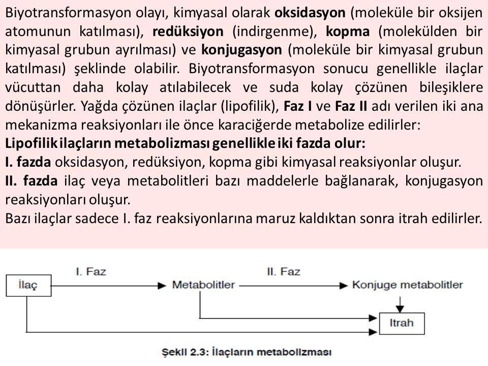 Biyotransformasyon olayı, kimyasal olarak oksidasyon (moleküle bir oksijen atomunun katılması), redüksiyon (indirgenme), kopma (molekülden bir kimyasal grubun ayrılması) ve konjugasyon (moleküle bir kimyasal grubun katılması) şeklinde olabilir. Biyotransformasyon sonucu genellikle ilaçlar vücuttan daha kolay atılabilecek ve suda kolay çözünen bileşiklere dönüşürler. Yağda çözünen ilaçlar (lipofilik), Faz I ve Faz II adı verilen iki ana mekanizma reaksiyonları ile önce karaciğerde metabolize edilirler:
