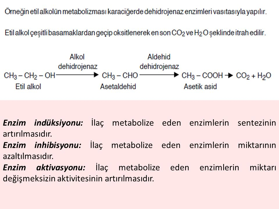 Enzim indüksiyonu: İlaç metabolize eden enzimlerin sentezinin artırılmasıdır.