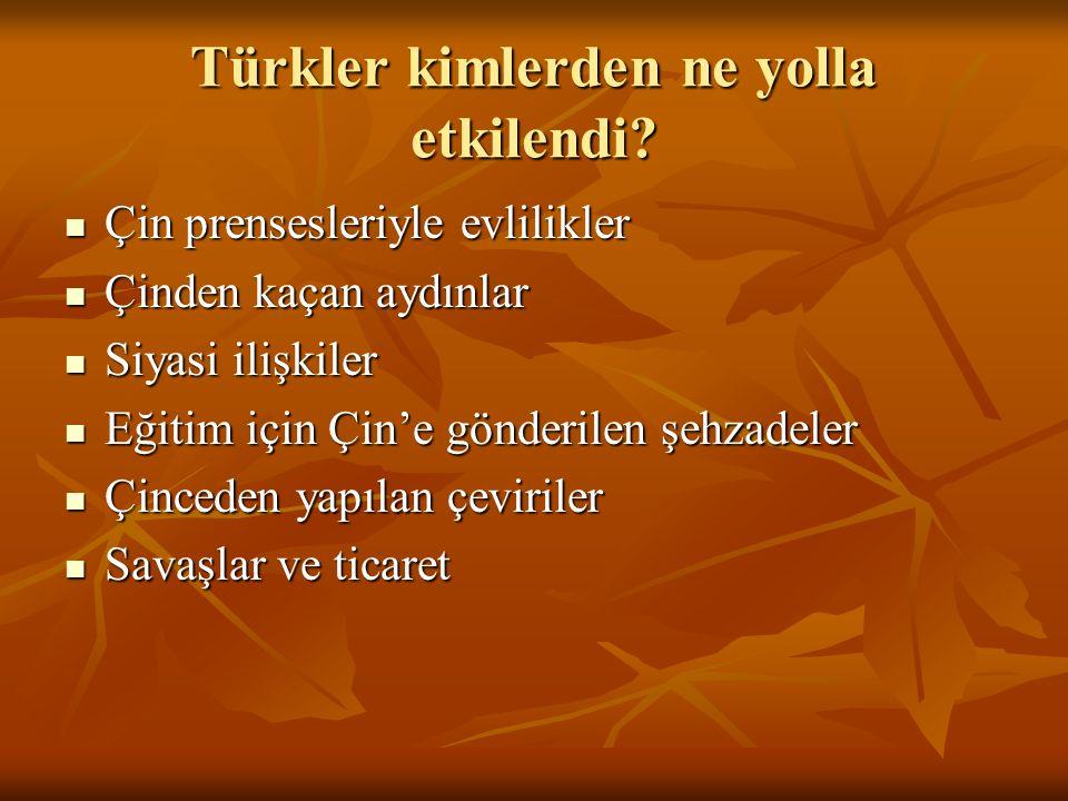 Türkler kimlerden ne yolla etkilendi