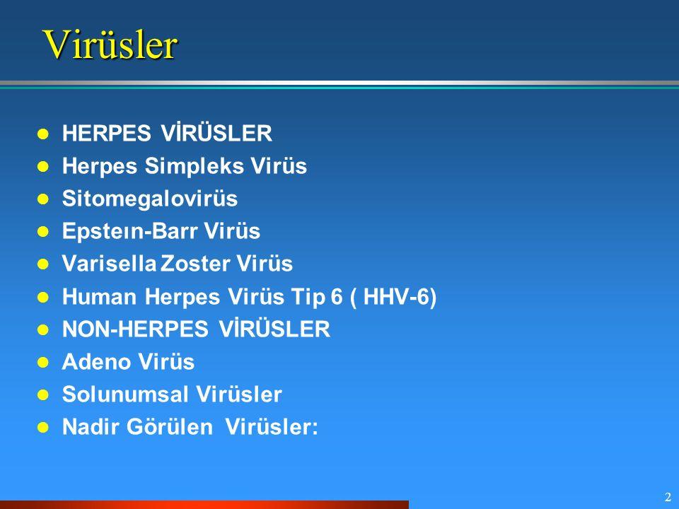 Virüsler HERPES VİRÜSLER Herpes Simpleks Virüs Sitomegalovirüs