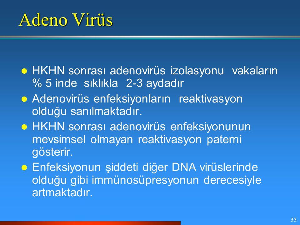 Adeno Virüs HKHN sonrası adenovirüs izolasyonu vakaların % 5 inde sıklıkla 2-3 aydadır.