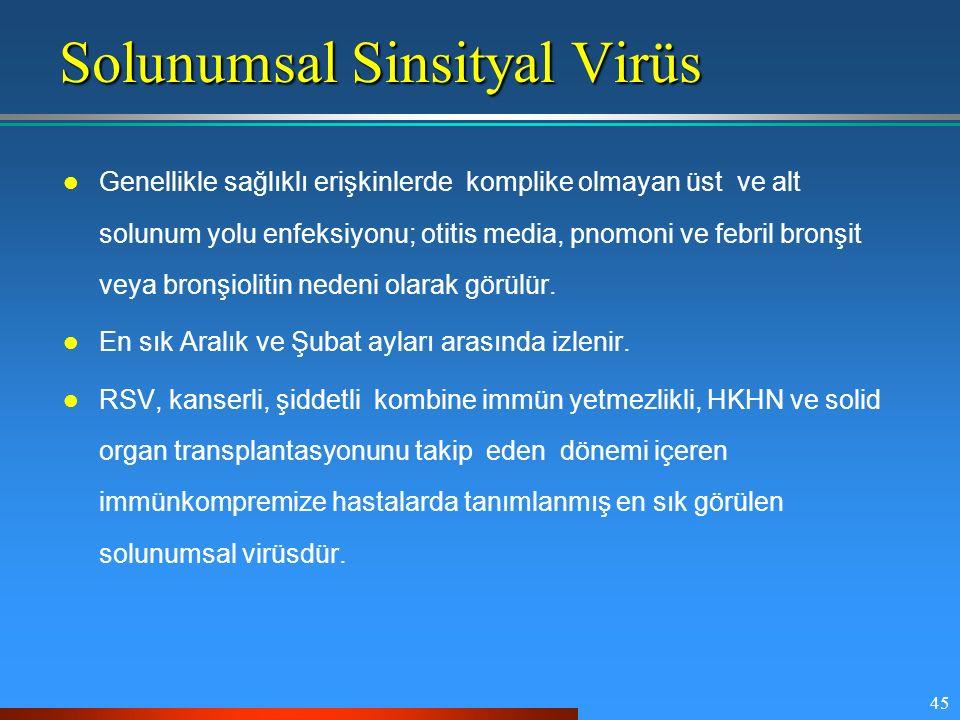 Solunumsal Sinsityal Virüs