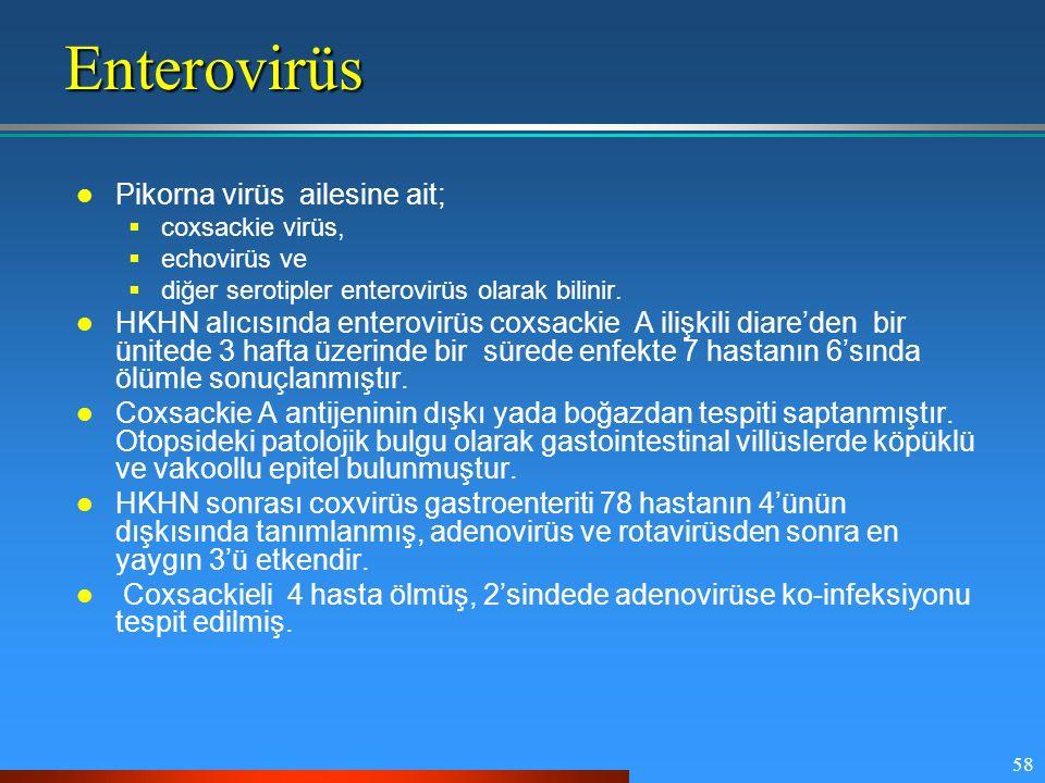Enterovirüs Pikorna virüs ailesine ait;