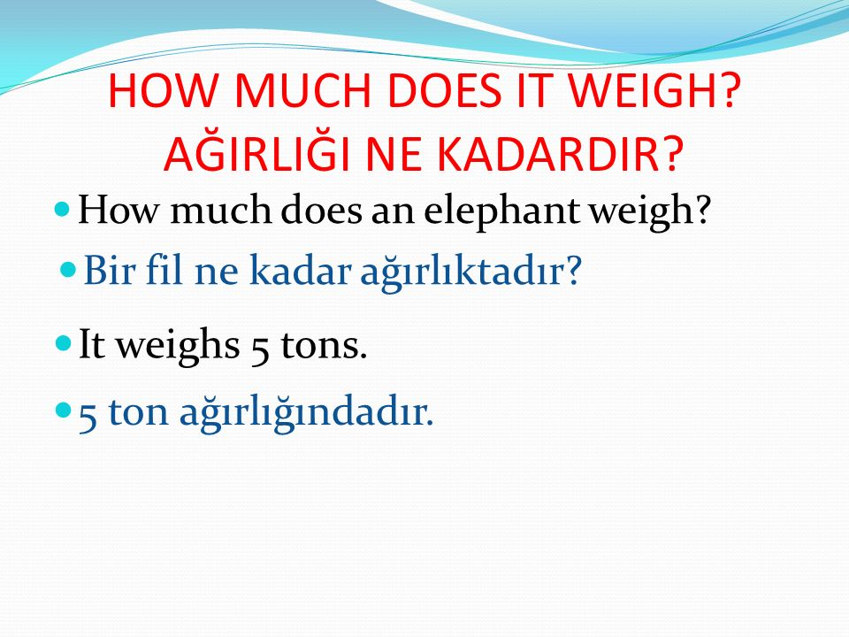 HOW MUCH DOES IT WEIGH AĞIRLIĞI NE KADARDIR