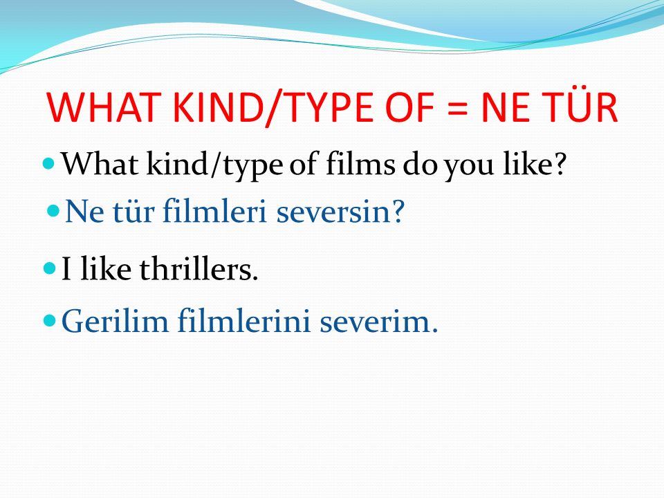 WHAT KIND/TYPE OF = NE TÜR