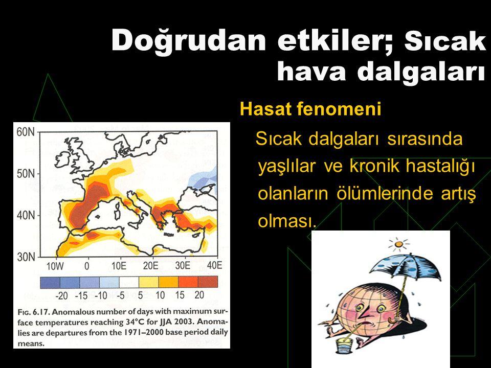 Doğrudan etkiler; Sıcak hava dalgaları
