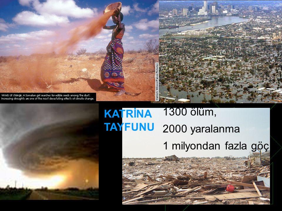 1300 ölüm, 2000 yaralanma 1 milyondan fazla göç KATRİNA TAYFUNU