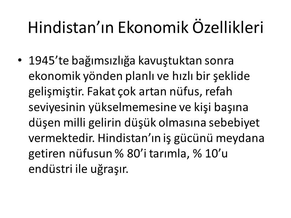 Hindistan'ın Ekonomik Özellikleri