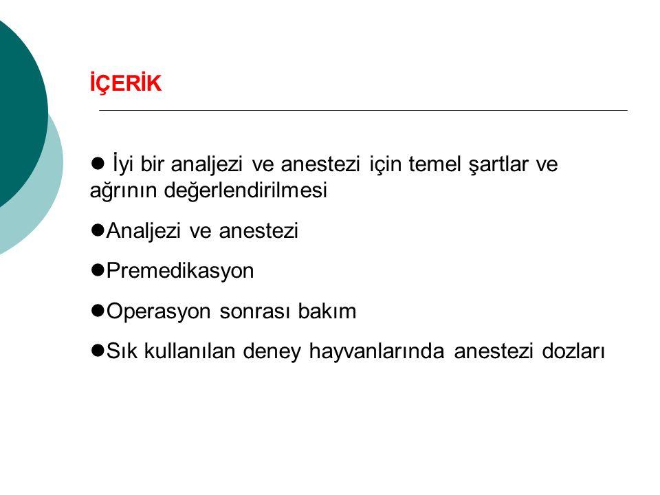 İÇERİK İyi bir analjezi ve anestezi için temel şartlar ve ağrının değerlendirilmesi. Analjezi ve anestezi.