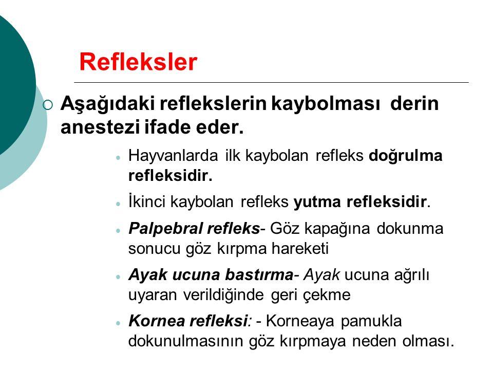 Refleksler Aşağıdaki reflekslerin kaybolması derin anestezi ifade eder. Hayvanlarda ilk kaybolan refleks doğrulma refleksidir.