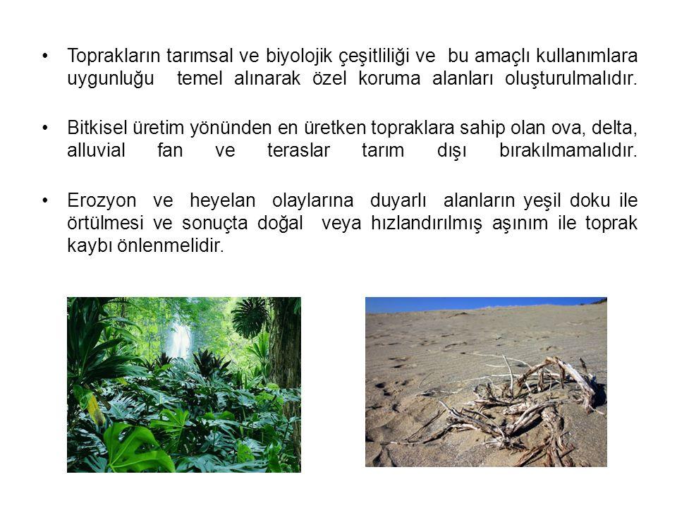 Toprakların tarımsal ve biyolojik çeşitliliği ve bu amaçlı kullanımlara uygunluğu temel alınarak özel koruma alanları oluşturulmalıdır.
