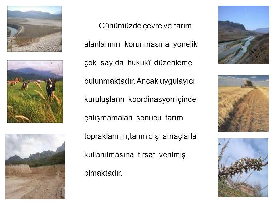 Günümüzde çevre ve tarım
