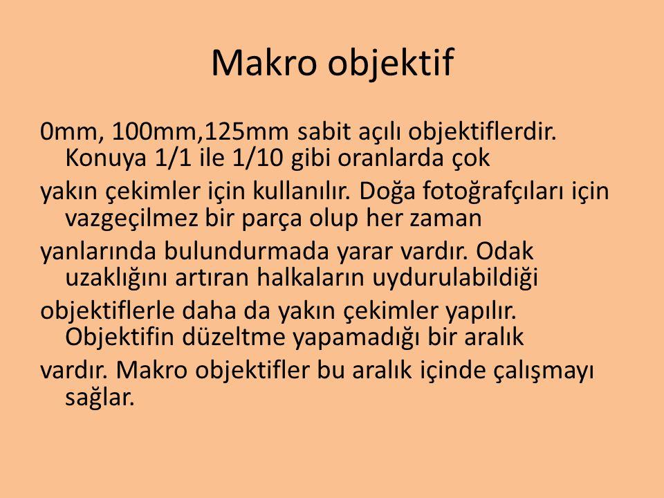 Makro objektif