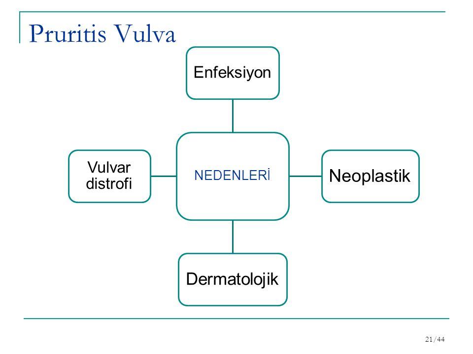 Pruritis Vulva Neoplastik Dermatolojik Enfeksiyon Vulvar distrofi