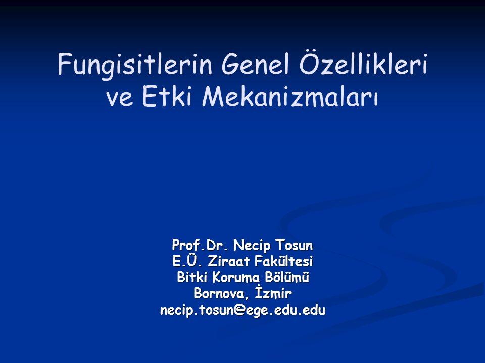 Fungisitlerin Genel Özellikleri ve Etki Mekanizmaları