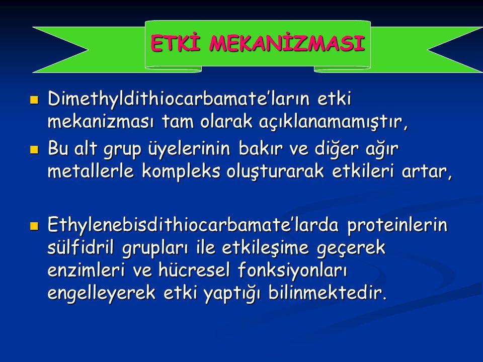 ETKİ MEKANİZMASI Dimethyldithiocarbamate'ların etki mekanizması tam olarak açıklanamamıştır,