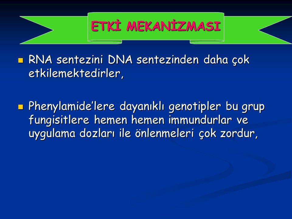ETKİ MEKANİZMASI RNA sentezini DNA sentezinden daha çok etkilemektedirler,