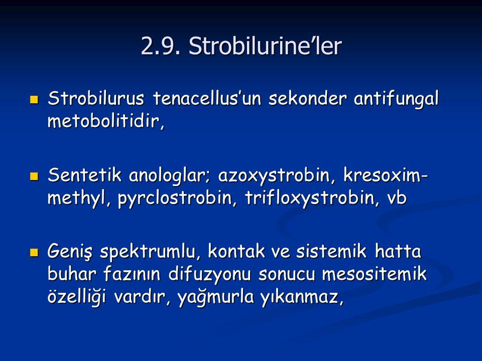 2.9. Strobilurine'ler Strobilurus tenacellus'un sekonder antifungal metobolitidir,