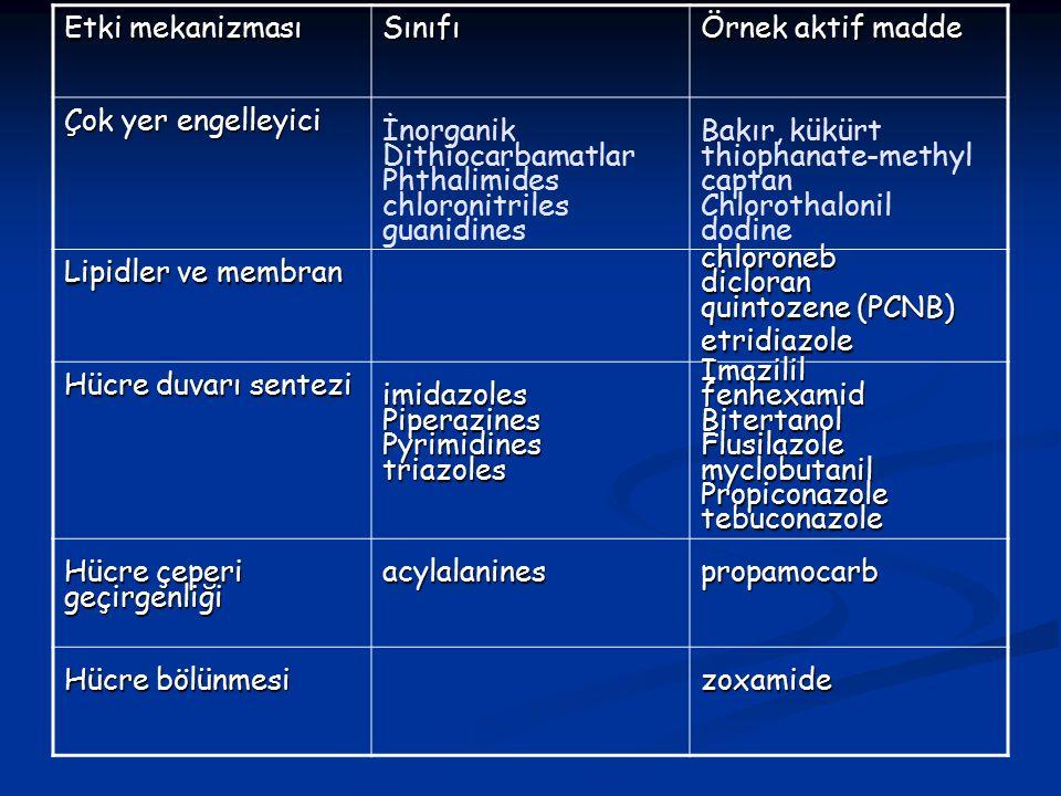 Etki mekanizması Sınıfı. Örnek aktif madde. Çok yer engelleyici. İnorganik. Dithiocarbamatlar. Phthalimides.