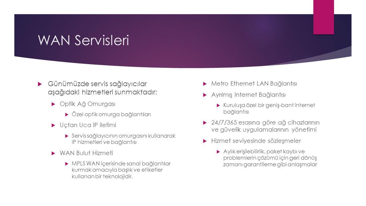 WAN Servisleri Günümüzde servis sağlayıcılar aşağıdaki hizmetleri sunmaktadır: Optik Ağ Omurgası.