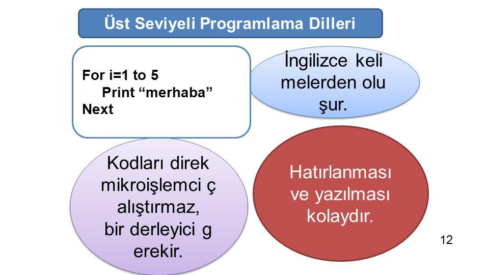 Üst Seviyeli Programlama Dilleri