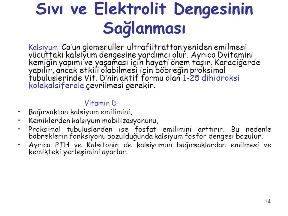 Sıvı ve Elektrolit Dengesinin Sağlanması