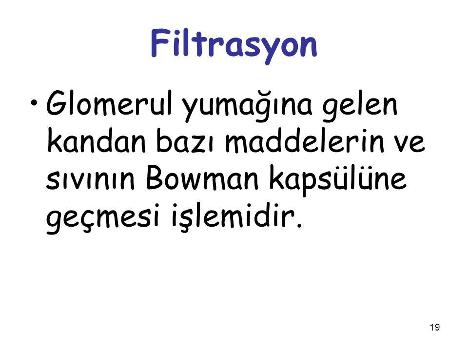 Filtrasyon Glomerul yumağına gelen kandan bazı maddelerin ve sıvının Bowman kapsülüne geçmesi işlemidir.