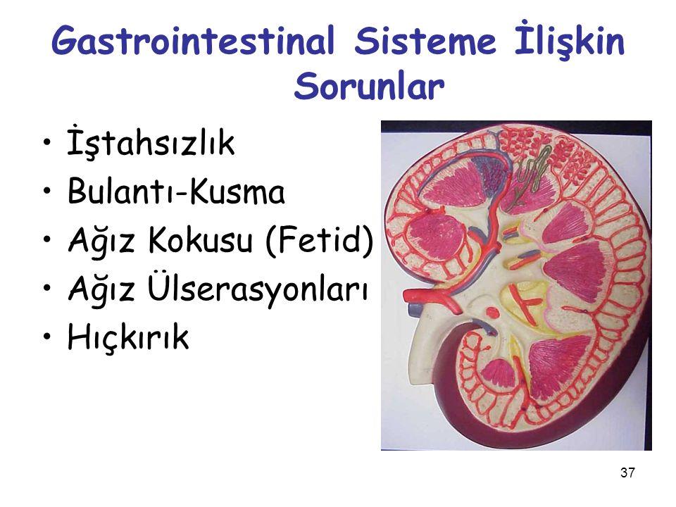 Gastrointestinal Sisteme İlişkin Sorunlar