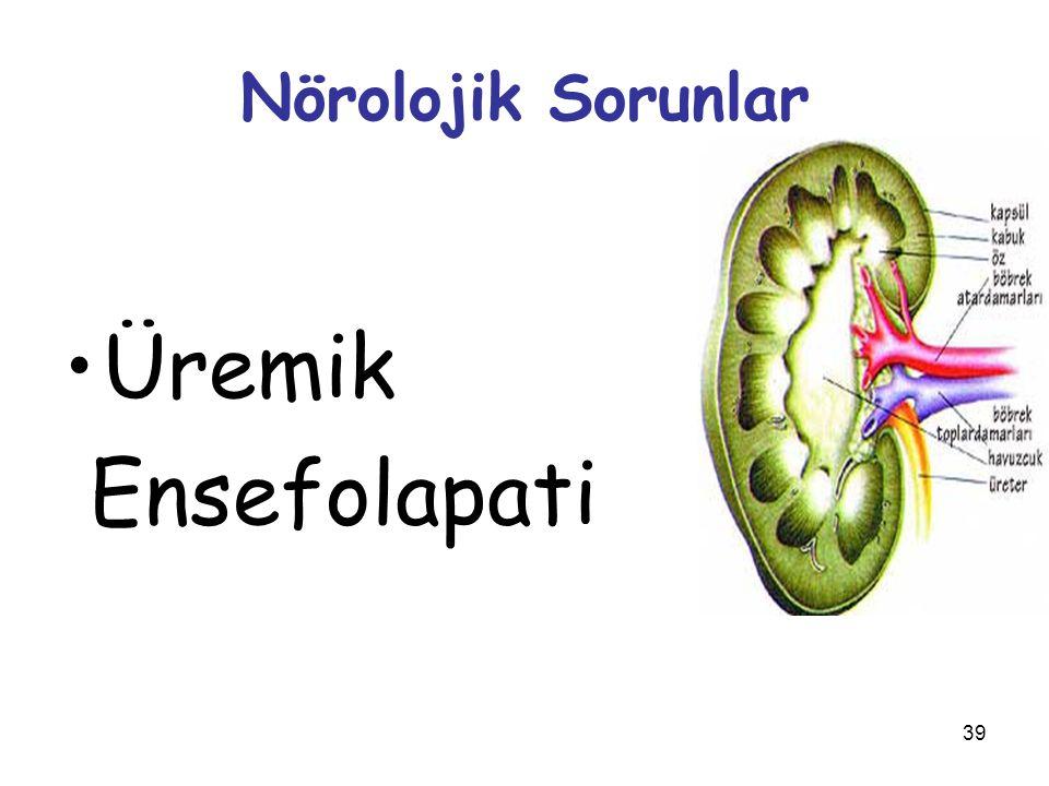 Nörolojik Sorunlar Üremik Ensefolapati