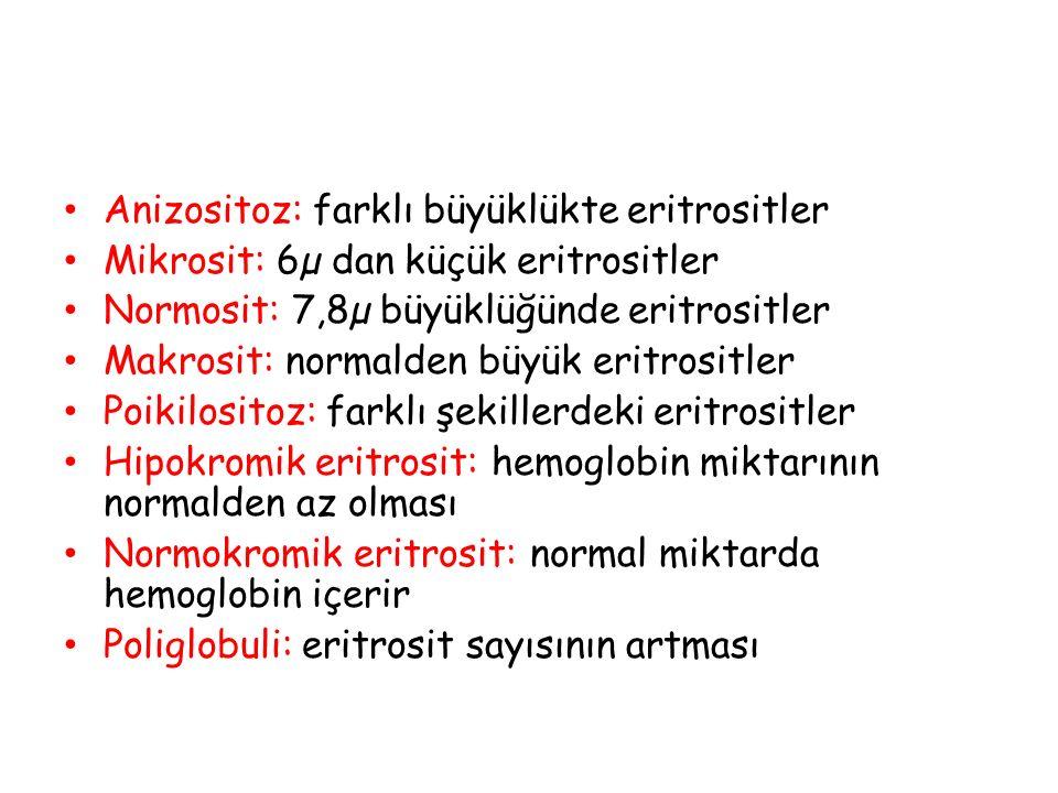 Anizositoz: farklı büyüklükte eritrositler