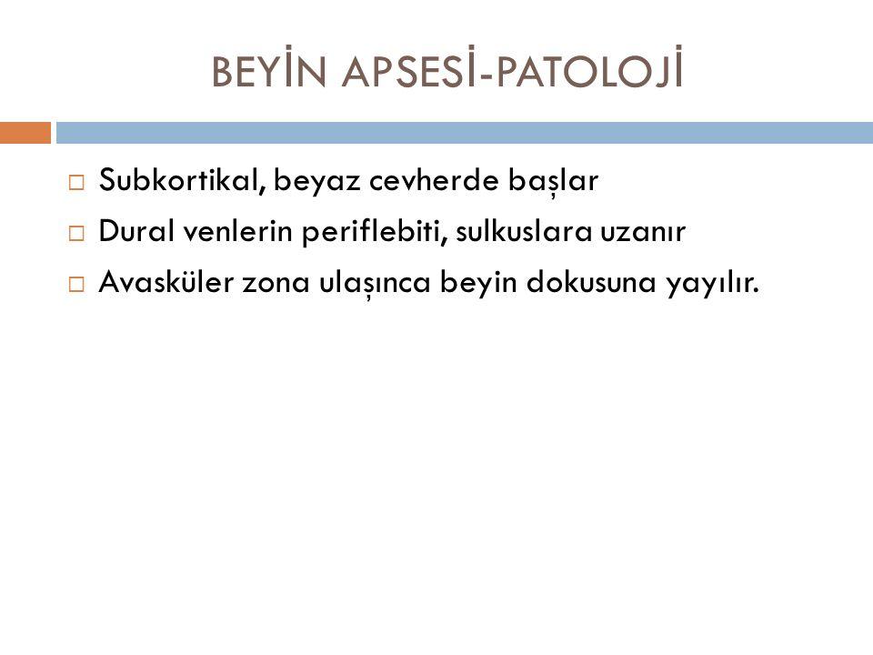 BEYİN APSESİ-PATOLOJİ