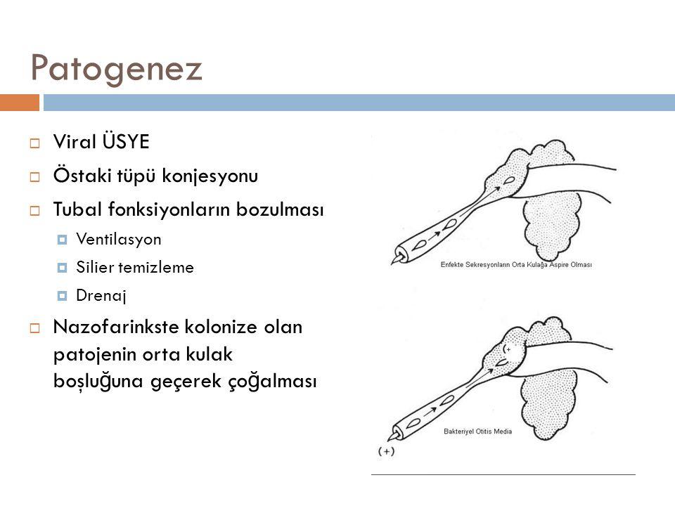 Patogenez Viral ÜSYE Östaki tüpü konjesyonu
