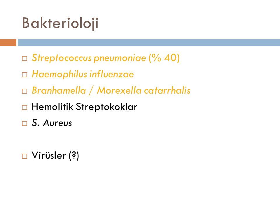 Bakterioloji Streptococcus pneumoniae (% 40) Haemophilus influenzae