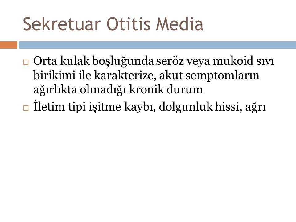 Sekretuar Otitis Media