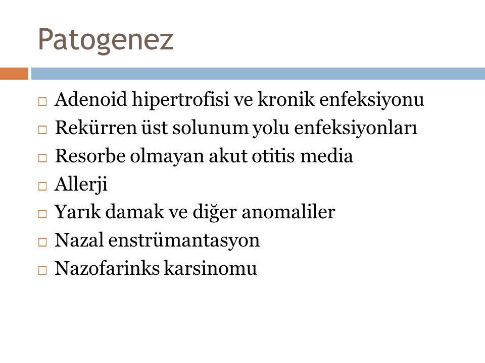 Patogenez Adenoid hipertrofisi ve kronik enfeksiyonu
