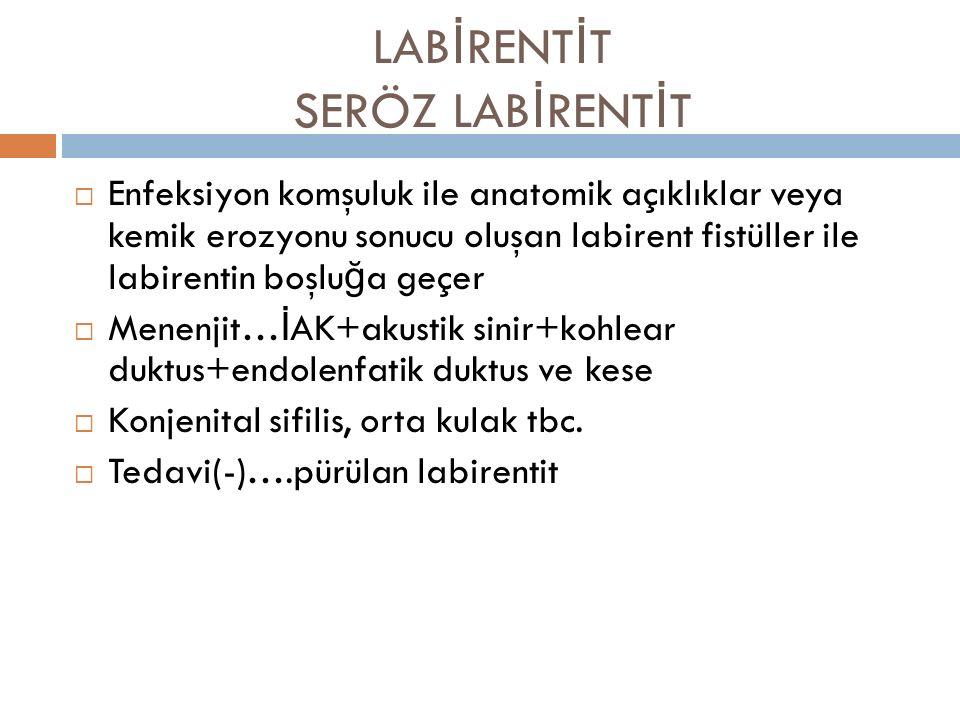 LABİRENTİT SERÖZ LABİRENTİT