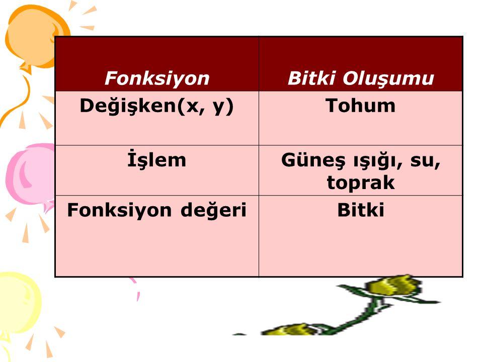 Fonksiyon Bitki Oluşumu Değişken(x, y) Tohum İşlem Güneş ışığı, su, toprak Fonksiyon değeri Bitki
