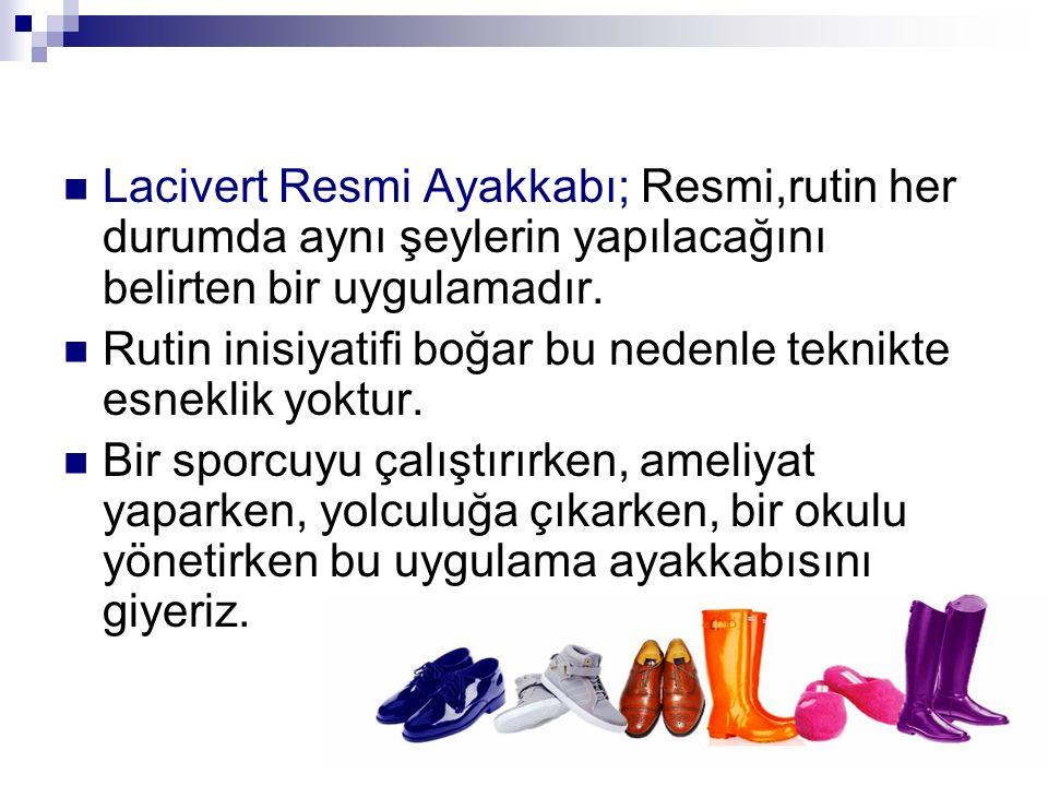 Lacivert Resmi Ayakkabı; Resmi,rutin her durumda aynı şeylerin yapılacağını belirten bir uygulamadır.