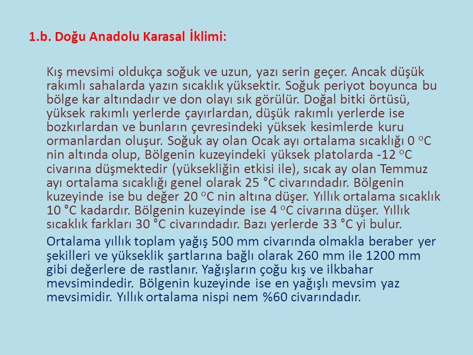 1.b. Doğu Anadolu Karasal İklimi: