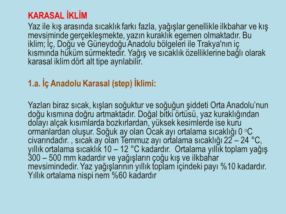 1.a. İç Anadolu Karasal (step) İklimi: