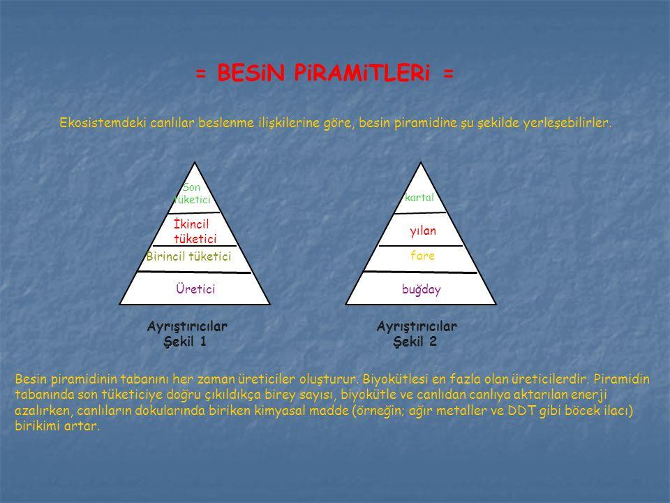 = BESiN PiRAMiTLERi = Ekosistemdeki canlılar beslenme ilişkilerine göre, besin piramidine şu şekilde yerleşebilirler.
