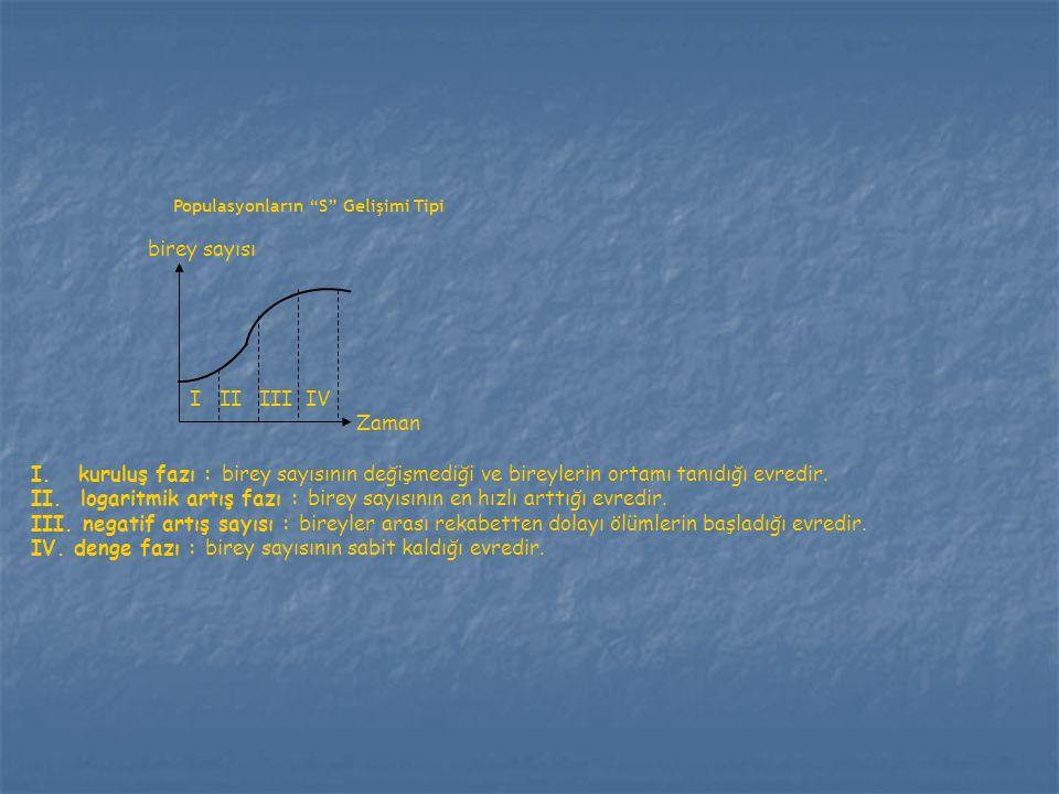 II. logaritmik artış fazı : birey sayısının en hızlı arttığı evredir.