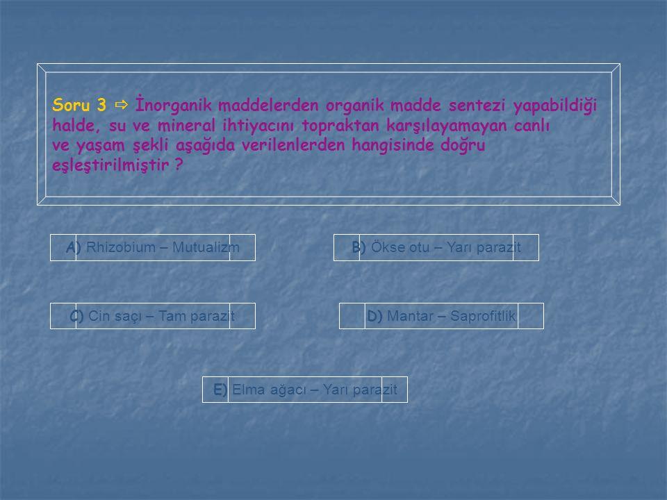 Soru 3  İnorganik maddelerden organik madde sentezi yapabildiği