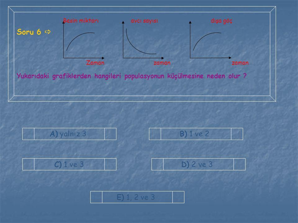 Soru 6  A) yalnız 3 B) 1 ve 2 C) 1 ve 3 D) 2 ve 3 E) 1, 2 ve 3
