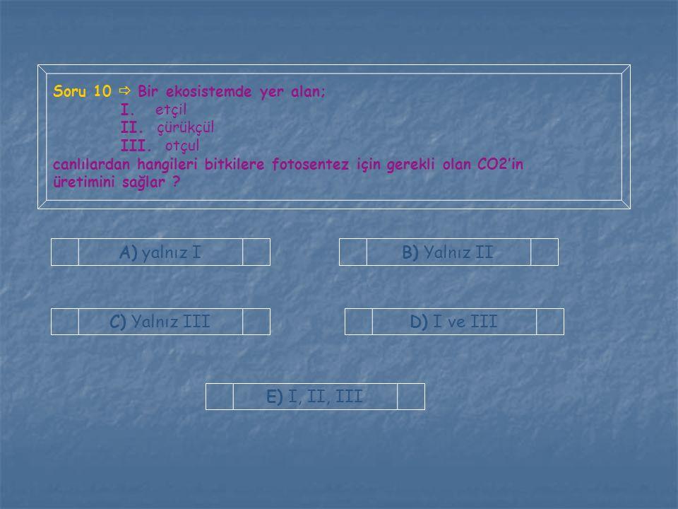A) yalnız I B) Yalnız II C) Yalnız III D) I ve III E) I, II, III
